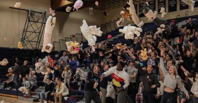 team emery bear toss